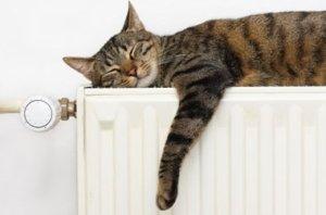 Как смонтировать водяное отопление