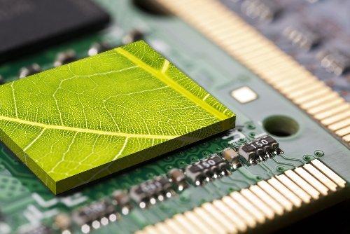 технологии Биоинактивации
