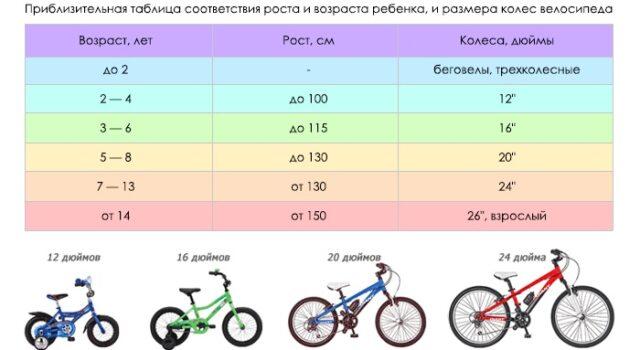 Выбираем велосипед: какой лучше?